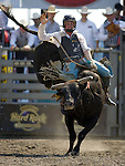 Taylor Cowan, from Ft. Pierce, S.D. tries to hang onto Slam Dunk during the Xtreme Bull Riding Competition at the Kitsap County Fair and Stampede  held Aug. 26 to Aug. 30, 2009 in Silverdale, WA. Jim Bryant Photo. All Right Reserved. © 2009