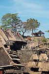 Overview of Bena Village, near Bajawa, Flores, East Nusa Tenggara, Indonesia