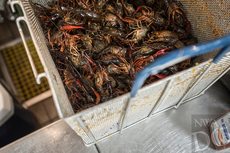 NWA Democrat-Gazette/ANTHONY REYES &bull; @NWATONYR<br /> Crawfish waiting in a basket to be boiled Wednesday, April 15, 2015 at The Hive, inside the 21C hotel in Bentonville. Many boils happen this time of year. The Hive's boil featured a four course meal with crawfish flown in fresh from the gulf coast. Chef Matt McClure created each dish.
