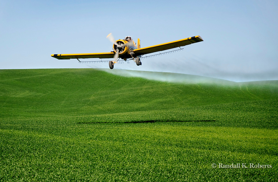 A crop duster releases his spray over a wheat field in the Palouse Country of Eastern Washington.