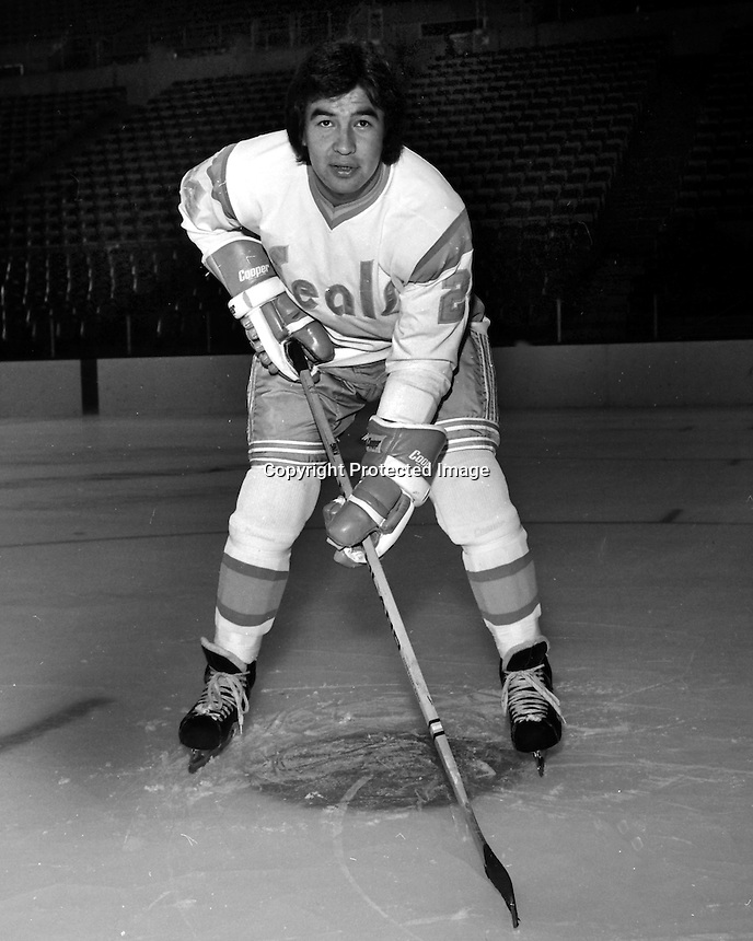 California Golden Seals hockey player, Wayne King,<br />