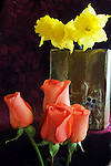 Roses and Daffodils and a painted vase