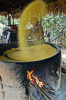 Production of manioc flour at home -Casa de Farinha, Amazon rainforest cultural traditions. Borba, beside Madeira River, Amazonas State, Brazil.