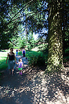 A sunny afternoon in Forest Park in Portland, Oregon