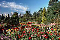 Stanley Park, Vancouver, BC, British Columbia, Canada - Flowers blooming in Flower Gardens with City behind