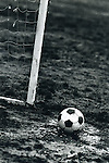 Soccer ball rests in a mud puddle on a soccer field.