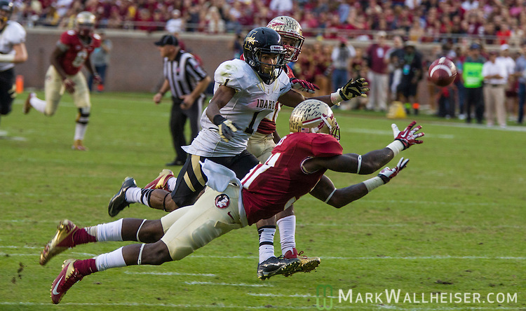 FSU-vs-Idaho-09-mw-112313.jpg