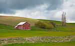 Washington, Eastern, Steptoe, Palouse Region. An old red barn under cloudy skies in spring.