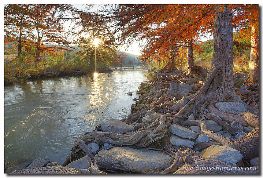 One of my favorite places to capture images of fall colors in the Texas Hill Country is along the riverbank of the Pedernales River. Here, each November, the cypress with their gnarled and twisting roots turn an amazing red and orange when the cooler weather hits. This photo, taken as the sun breaks over the distant horizon, offers those familiar trees and a beautiful, peaceful morning in central Texas.