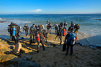Scuba Diving from the beach, Monterey, California, Pacific Ocean