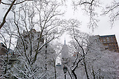 New York, New York<br /> USA<br /> February 21, 2011<br /> <br /> The Empire State building between the trees at Madison Square Park on a snowy President's day.