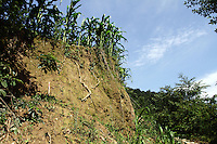 Crops grow on a crumbling hillside in the mountains of Pingwu County in Sichuan Province, south-west China.