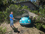 ALLIGATOR POINT, FL - SEPTEMBER 02:  Tom Reams looks over a tree on top of his 15 year old daughter's Volkswagen Beetle and house cause by the wind and storm surge from Hurricane Hermine at Alligator Point, Florida September 2, 2016. Hermine made landfall as a Category 1 hurricane but has weakened back to a tropical storm. (Photo by Mark Wallheiser/Getty Images)