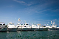 Luxury motor cruisers in the harbour at Anna Maria Island, Florida Sunshine State, United States of America