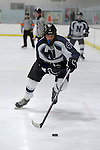 2013 ICCP Hockey vs Brother Rice