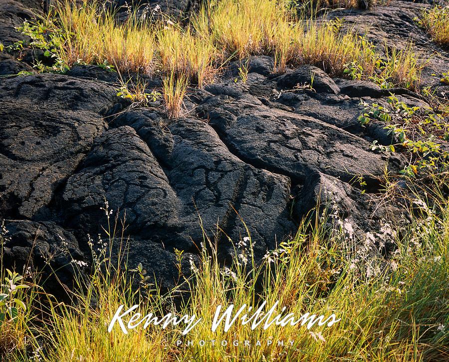 Pu'u Loa Petroglyphs, Volcanoes National Park, Big Island, Hawaii, USA.