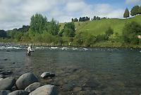 Mann fisker med flue i Whakapapa River på New Zealand ---- Man flyfishing Whakapapa River, New Zealand