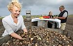 Foto: VidiPhoto<br />  <br /> NOORDWIJKERHOUT &ndash; Ondanks dat het zomervakantie is voor veel Nederlanders, wordt er in de bollenstreek donderdag keihard gewerkt. Bij kwekerij Jac Uittenbogaard &amp; Zonen uit Noordwijkerhout worden de eerste bollen met Milieukeur gerooid, gesorteerd, gedroogd en verkoopklaar gemaakt. Uittenbogaard is een van de drie Nederlandse bloembollentelers die onlangs een milieucertificaat van de Stichting Milieukeur ontving. De drie bedrijven zijn samen goed voor 230 hectare aan teelt van extra duurzame voorjaarsbloeiers als tulpen, krokussen, irissen en narcissen. Kweker Rudolph Uittenbogaard is tevreden: &ldquo;Ondanks de extreme weersomstandigheden van de afgelopen maanden is de oogst van mooie kwaliteit en er zijn voldoende aantallen.&rdquo; Milieukeur voor de bollenteelt stelt hoge eisen op het gebied van bemesting en bodemvruchtbaarheid, gewasbescherming, water, energie en biodiversiteit. De bollen met Milieukeur zijn dit najaar voor het eerst verkrijgbaar.