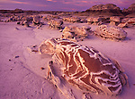 """The """"Cracked Eggs"""" rock formation at sunset in Bisti Badlands, New Mexico"""