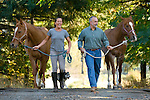 Couple walking  their horses