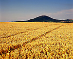 The Wrekin, Nr Telford, Shropshire. England. Celtic Britain published by Orion . This hillfort with impressive views across the flat arable farmland of Shropshire was probably first used during the Bronze Age period. It was later used by Iron Age people and then during the Roman occupation of Britain, when it was possibily the tribal capital of the Cornovii.  .