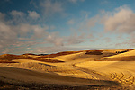 Washington, Palouse Valley.  Harvested and plowed fields in the fall in the Palouse Valley in Washington