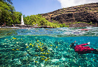 A visitor encounters tropical fish while snorkeling at Kealakekua Bay, with the Captain Cook Monument and other visitors on the distant shore, Big Island. (Note: the snorkeler is model released, the distant visitors are not.)
