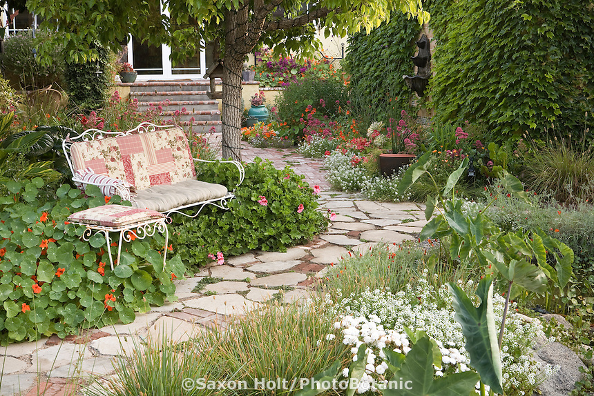 Backyard garden with recyled concrete path and cushioned bench