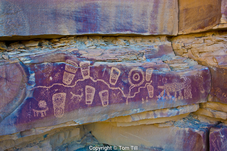 Petroglyphs on a high ledge, Southern Utah           Location secret to protect rock art               Ancient Puebloan petroglyphs