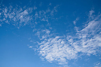 Cirrocumulus clouds in a bright blue sky (mackerel sky).