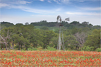 In the Texas Hill Country near Mason, I found an old windmill in a sea of red Texas Wildflowers. I stopped to take a few images of this tranquil scene. I've returned here several years but, probably because of the recent drought, I haven't seen this much color since this day.