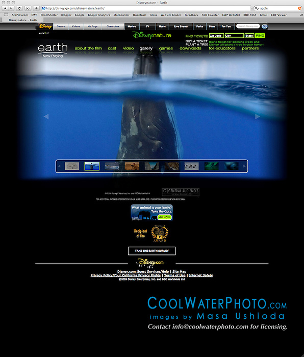 Disney Movie Earth, promotional advertisement, multiple marketing and advertising use, Worldwide, Image ID: Humpback-Whale-0394