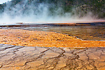 Steam rises from Grand Prisimatic Spring at Midway Geyser Basin in Yellowstone National Park.