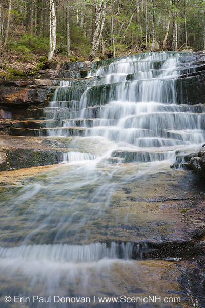 Fletcher Cascades during the spring months. Located on Drakes Brook in Waterville Valley, New Hampshire USA. This area was logged during the Mad River Logging Era.