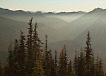 View of Hurricane Ridge and the Grand Creek drainage from the top of Blue Mountain at Deer Park in Olympic National Park, Washington, USA