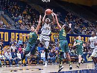 CAL (W) Basketball vs. Oregon, January 5, 2014