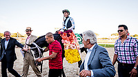 OLDSMAR, FL - MARCH 11: Tapwrit #5, ridden by Jose Ortiz (green hat), entering the winners circle after winning the Tampa Bay Derby on Tampa Bay Derby Day at the Tampa Bay Downs on  March 11, 2017 in Oldsmar, Florida. (Photo by Douglas DeFelice/Eclipse Sportswire/Getty Images)