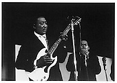 MUDDY WATERS WITH JAMES COTTEN (1965)