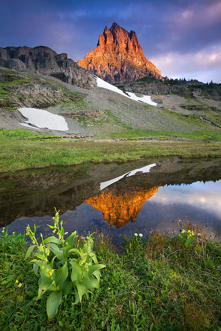 """MOUNT CLEMENT DAWN"" - Mount Clement reflected in a small pool of water in the high country of Glacier National Park, Montana."