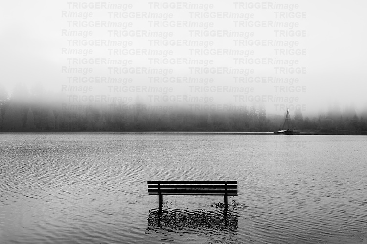 Park Bench along a flooded path in a lagoon with low lying fog.