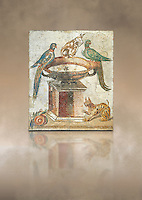 Roman mosaic of drinking birds from Santa Maria Capua Vetere, ancient Capua, inv no 9992, Naples Archaeological Musum, Italy