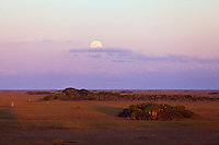 The full moon rises above the eastern horizon opposite the setting sun, as seen from the Shark Valley observation tower in Everglades National Park, Florida on January 8, 2012.