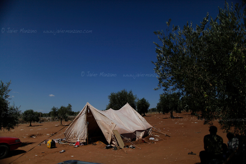 """A tent amongst olive trees is pitched in a stretch of land close to the Turkish border. This are serves as a base for a smuggler's camp. It is here that fighters for the Free Syrian Army are recruited along with other """"supplies"""" from Syrian's seeking to cross into Turkey as refugees. ..Javier Manzano"""