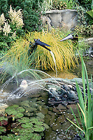 Water pond garden with fountains made from metal fish and spouting crows birds, with sprays of water falling, ornamental grasses, waterlily plants, stones and perennials, creating a sense of movement, activity, sound, and playful fun and humor