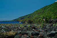 Hikiau heiau guards a village site next to the underwater state park at Kealakekua bay where you can  snorkel or swim to the Cook monument off in the distance