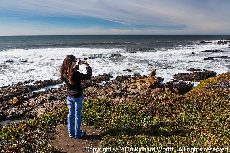 A young woman uses her phone to take a picture from a bluff above a rocky beach with ocean waves and cloud streaked skies.  Bean Hollow State Beach on the California coast.