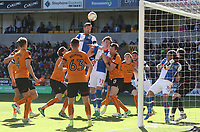 Blackburn Rovers' Lucas Joao misses with a close range header late into the second half<br /> <br /> Photographer Rachel Holborn/CameraSport<br /> <br /> The EFL Sky Bet Championship - Wolverhampton Wanderers v Blackburn Rovers - Saturday 22nd April 2017 - Molineux - Wolverhampton<br /> <br /> World Copyright &copy; 2017 CameraSport. All rights reserved. 43 Linden Ave. Countesthorpe. Leicester. England. LE8 5PG - Tel: +44 (0) 116 277 4147 - admin@camerasport.com - www.camerasport.com