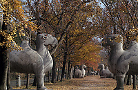 Asie/Chine/Jiangsu/Nankin&nbsp;: La voie Sacr&eacute;e - Statues colossales repr&eacute;sentant des chameaux, conduisant au mausol&eacute;e de l'Empereur<br /> PHOTO D'ARCHIVES // ARCHIVAL IMAGES<br /> CHINE 1990