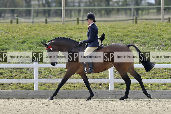 Championship for classes 22 and 23. Affiliated Spring Showing. Brook Farm Training Centre. Essex. 03/04/2016. MANDATORY Credit Garry Bowden/Sportinpictures - NO UNAUTHORISED USE - 07837 394578