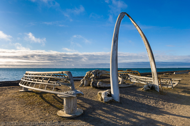 Bowhead whale jaw bone arch with wooden Umiak frames (whale hunting boats) Utqiagvik (Barrow), Alaska.